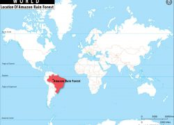 Amazon River On World Map: Amazon river on world map from whereig 1