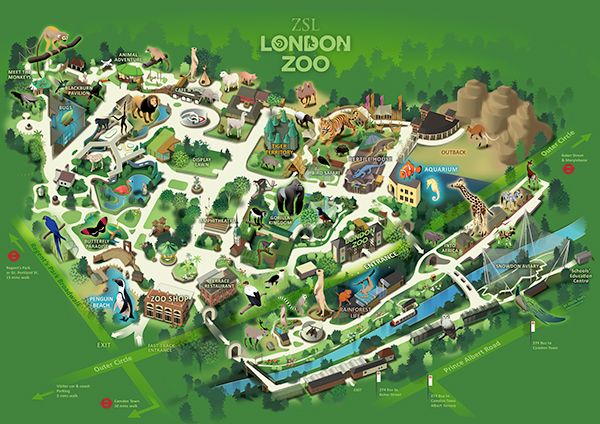 London zoo map 2020 from pinterest 2