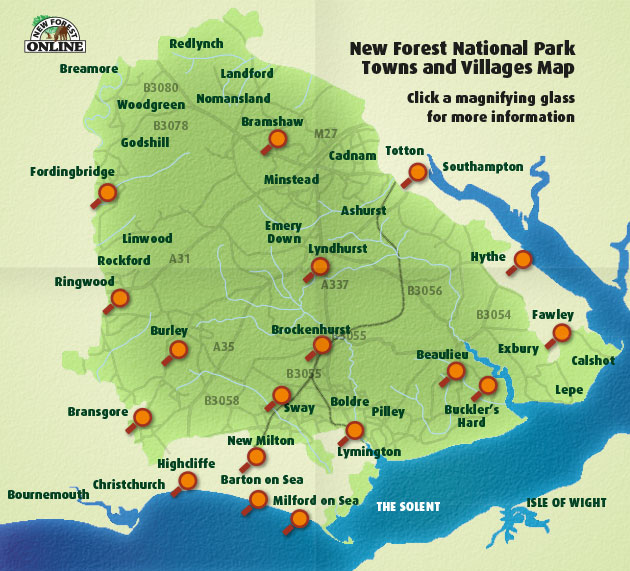 New Forest Map