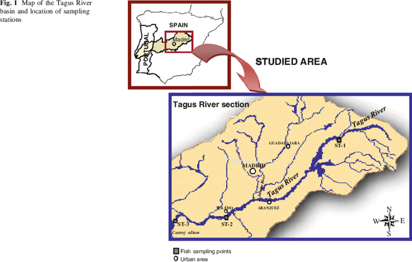 Tagus River Map From Researchgate 2