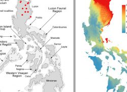 Map Of The Philippines With Label: Map of the philippines with label from researchgate 1