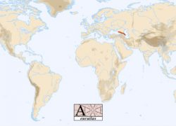Caucasus mountains on world map from euratlas 7
