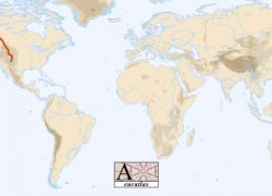 Rocky Mountains On World Map: Rocky mountains on world map from euratlas 1