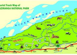 Kaziranga National Park Map: Kaziranga national park map from kaziranganationalpark india 2