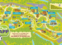 National Zoo Map: National zoo map from pinterest 1