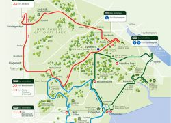 New Forest Map: New forest map from thenewforesttour 1