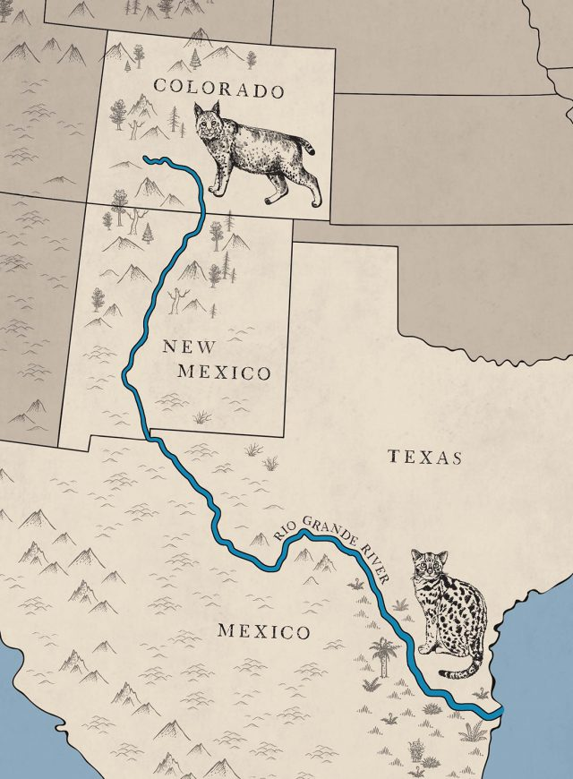 Rio grande river map from americanforests 1
