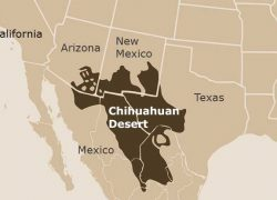 Chihuahuan Desert Map: Chihuahuan desert map from desertusa 1