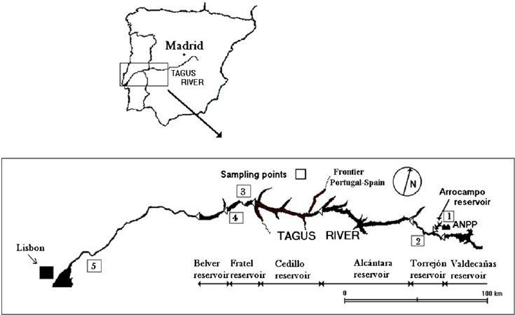 Tagus River Map From Researchgate 6