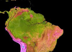 Amazon rainforest map from earthobservatory 4