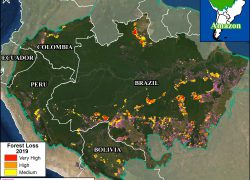 Amazon rainforest map from maaproject 10