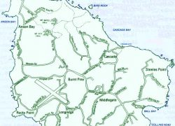 Norfolk island map from library 2