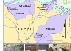 Nile delta map from researchgate 2